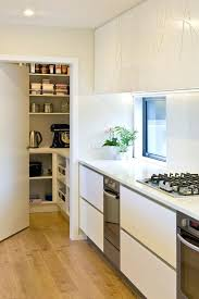 pantry ideas for small kitchen top 100 contemporary kitchen pantry ideas remodeling photos houzz