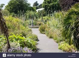 Ventnor Botanic Gardens General View Of Ventnor Botanic Garden In Ventnor Isle Of Wight