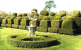 Yew Topiary - hever castle u2013 topiary in the united kingdom