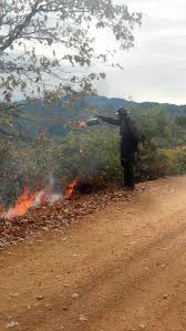 Wildfire Near Markleeville Ca by Cfn California Fire News Cal Fire News 10 1 13