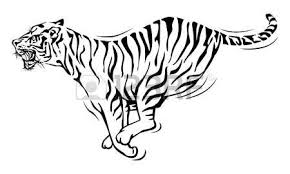2 731 bengal tiger stock vector illustration and royalty free