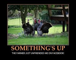thanksgiving funniest to get you in the thanksgiving spirit