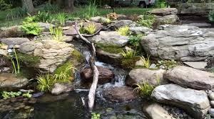 water gardens baltimore small water garden installation
