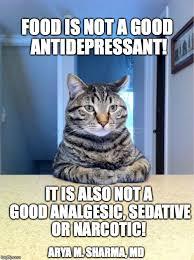 Antidepressant Meme - take a seat cat meme imgflip