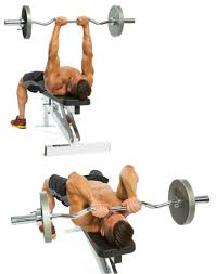 blueprint for bigger arms muscle u0026 performance