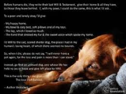 pet prayer a dog s prayer for his owner comfort for those who mourn