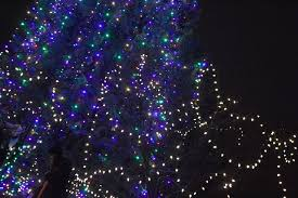 second annual light up delta falls on donations