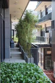 blumenkã sten balkon 75 besten terrasse bilder auf gärten gartenanlage und