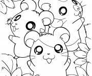 Coloriage Hamster gratuit à imprimer