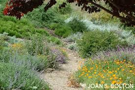 santa barbara garden design water conservation and the drought