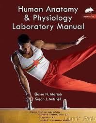 Human Anatomy And Physiology Marieb 7th Edition Human Biology Concepts And Current Issues 7th Edition Michael D
