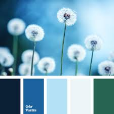 color palette 2828 color palette ideas dark grey color dark