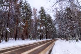 Way To Winter Free Images Tree Cold White Car Pine Weather
