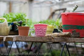 gardening 101 container gardening container vegetable
