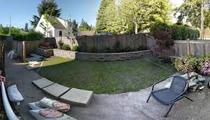landscaping trees in narrow space behind retaining wall
