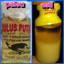 Minyak Bulus Asli Papua sari minyak bulus asli murni home