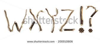 twigs big set macro dry branches stock photo 490018804 shutterstock