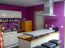 cuisine en violet awesome peinture cuisine violet pictures joshkrajcik us