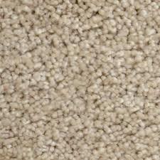 home decorators collection carpet sample stargazer color