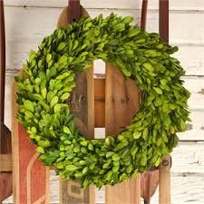 preserved boxwood wreath giveaways preserved boxwood wreaths