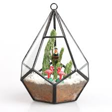 terrarium how to boost your mood with a hanging garden zenyzest