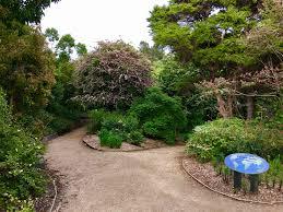 New Zealand Botanical Gardens Dunedin Botanic Gardens New Zealand A Of Travel