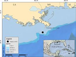 map central mexico map of study area in the central gulf of mexico