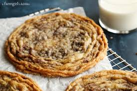 chocolate chip cookies from the vanilla bean baking book a