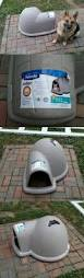 Igloo Dog Houses Best 25 Dog Igloo Ideas Only On Pinterest Cardboard Houses