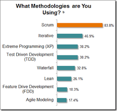 software development methodology the basics of waterfall and agile software development processes