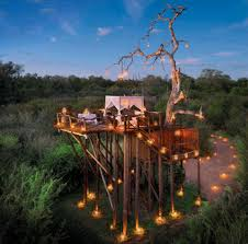 chalkley treehouse amazing outdoor hotel picnic area in lion