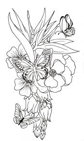 butterfly and flower by on 50 extraordinary hibiscus