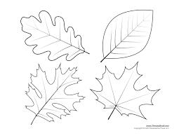 leaves coloring pages printable templates maple leaf gekimoe