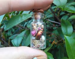 real insect jewelry terrarium jewelry halloween costume women