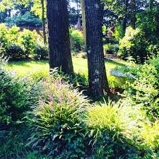 a little piece of my backyard paradise gardening garden diy