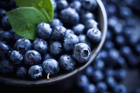 Lpi Sample Essay Blueberries Health Benefits Facts And Research