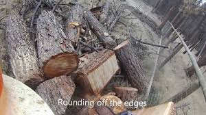Stump Chair Carving A Chair From A Stump Youtube