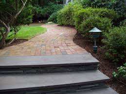 long island new york tree care and landscaping tree removal