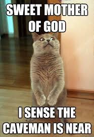 Mother Of Good Meme - sweet mother of god cat meme cat planet cat planet