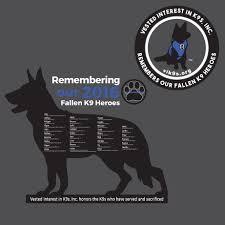 belgian sheepdog massachusetts past events vested interest in k 9s inc