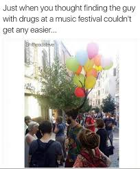 Music Festival Meme - finding the guy with drugs at a music festival