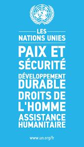 si e des nations unies à propos de l onu nations unies