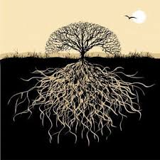 tree symbolism oak tree symbolism ekostories
