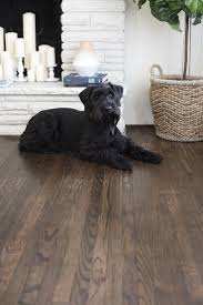 Best Laminate Wood Flooring For Dogs Best Engineered Hardwood Flooring Brand Review Top 5 Popular