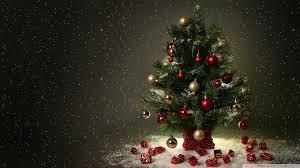 christmas tree wallpaper 2048x1152 68293