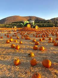 Pumpkin Patch Moorpark by Underwoodfamilyfarms Underwoodfarms Twitter