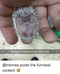 Funny Newborn Memes - picture of newborn baby guy fieri posts the funniest content