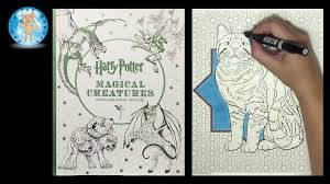 harry potter magical creatures coloring book speed color family