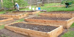 How To Install A Raised Garden Bed - eartheasy blogcedar vs recycled plastic vs composite raised