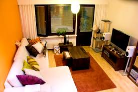 Simple Apartment Decorating Ideas by Apartments Fascinating Living Room Simple Apartment Decorating